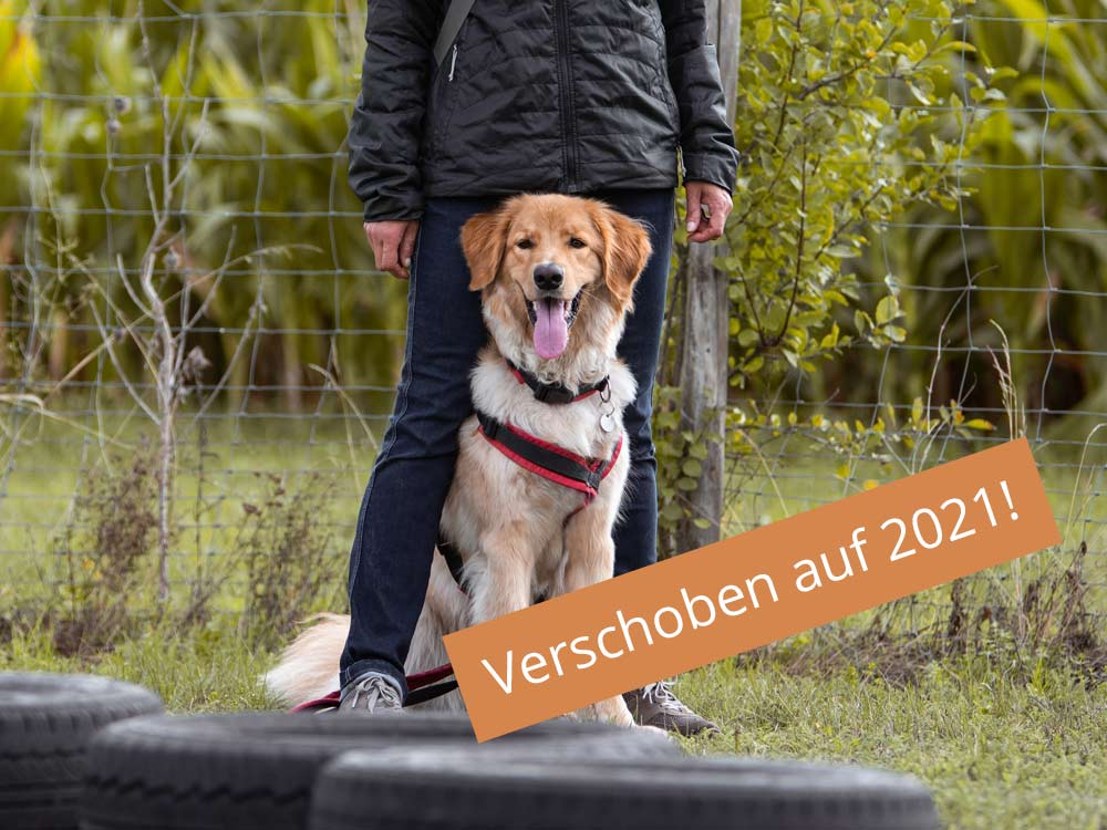 Hund, Seminar verschoben